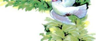 Белый голубок - Немецкая сказка