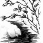 Белый кораблик - Георгий Скребицкий