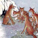Бесхвостая лисица - Эзоп