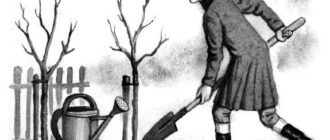 Два дерева - Владимир Одоевский