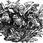 Голубые лягушки - Виталий Бианки