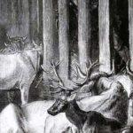 Хозяйский глаз - Жан де Лафонтен