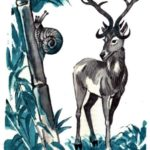 Как олень и улитка бежали наперегонки - Филиппинская сказка