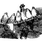 Как старуха нашла лапоть - Русская сказка