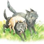 Как волки учат своих детей - Лев Толстой