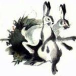 Как я хотел зайцу соли на хвост насыпать - Виталий Бианки