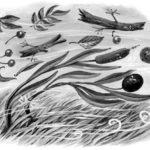 Камыш и маслина - Лев Толстой