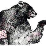 Комар и медведь (Словацкая) - Славянская сказка