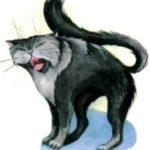 Кот-озорник - Башкирская сказка