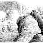 Кот и старая крыса - Жан де Лафонтен