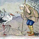Крестьянин и аист - Эзоп