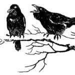 Крылатый охотник - Георгий Скребицкий