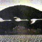 Лебединое обличье - Шведская сказка