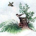 Лесной Плакунчик - Белозёров Т. - Отечественные авторы