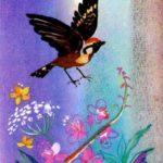 Лесной воробей и серая мышь - Эвенкийская сказка