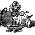 Лиса и дрозд (2) - Русская сказка