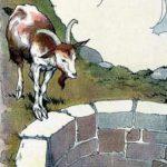 Лиса и козел - Русская сказка