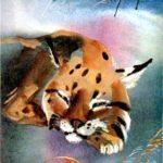Лиса и рысь - Эвенкийская сказка