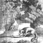 Лисица и аист - Жан де Лафонтен
