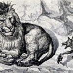 Лисица и лев - Эзоп