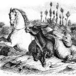 Лошадь и осел - Жан де Лафонтен