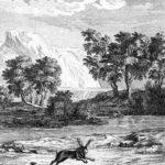 Львиный указ - Жан де Лафонтен