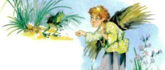 Лягушка-помощница - Латышская сказка