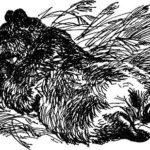 Маленькие рассказы: Как муха медведя от смерти спасла - Виталий Бианки