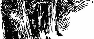 Маленькие тролли или большое наводнение - Туве Янссон