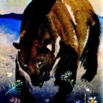 Медведь и бурундук - Эвенкийская сказка