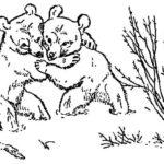 Медвежонок - Георгий Скребицкий