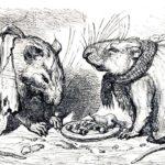Мышь и крыса - Иван Крылов