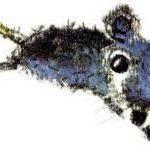 Мышарики. Книга Мышей для больших и малышей - Андрей Усачев