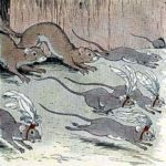 Мыши и ласки - Эзоп