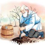 Мудрый старик - Лев Толстой