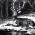 Олень и его отражение - Жан де Лафонтен