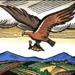 Орел и черепаха - Албанская сказка