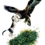 Орел и кошка - Константин Ушинский
