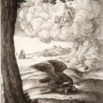 Орел и жук - Эзоп