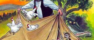 Петсон и Финдус: Петсон в походе - Свен Нурдквист