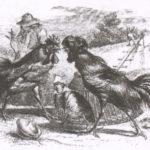 Петухи и куропатка - Эзоп
