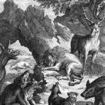 Похороны львицы - Жан де Лафонтен