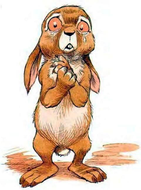 Плачущий кролик картинки внутренних фасадных