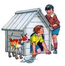 Прятки в будке собаки