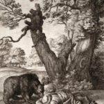 Путники и медведь - Эзоп