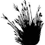 Разговор птиц и зверей - Михаил Пришвин
