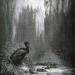Рыбы и баклан - Жан де Лафонтен