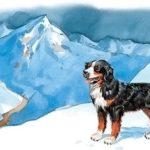 Сан-готардская собака - Лев Толстой