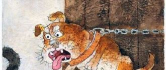 Шамайка – королева кошек - Юрий Коваль