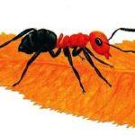 Сказки-несказки: Как муравьишка домой спешил - Виталий Бианки